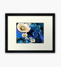 Oyster Season Framed Print