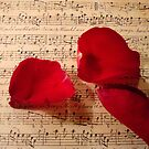 You make my heart sing... by Kathy Bucari