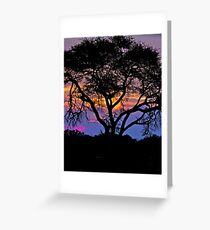 """ African Serenity"" - Sunset over the Okavango Delta Greeting Card"