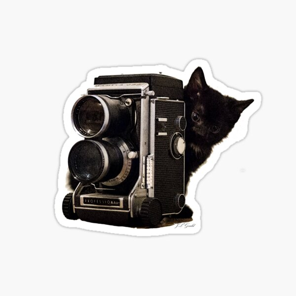 Feline Photographer Sticker