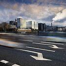 Pont d'Austerlitz, Paris by laurentlesax