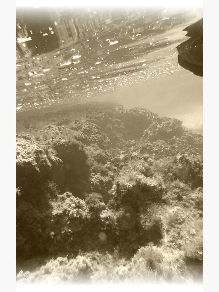 mar de OliverHowling