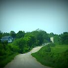 A Beautiful Country Drive by Linda Miller Gesualdo