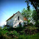 Forgtten In The Country by Linda Miller Gesualdo