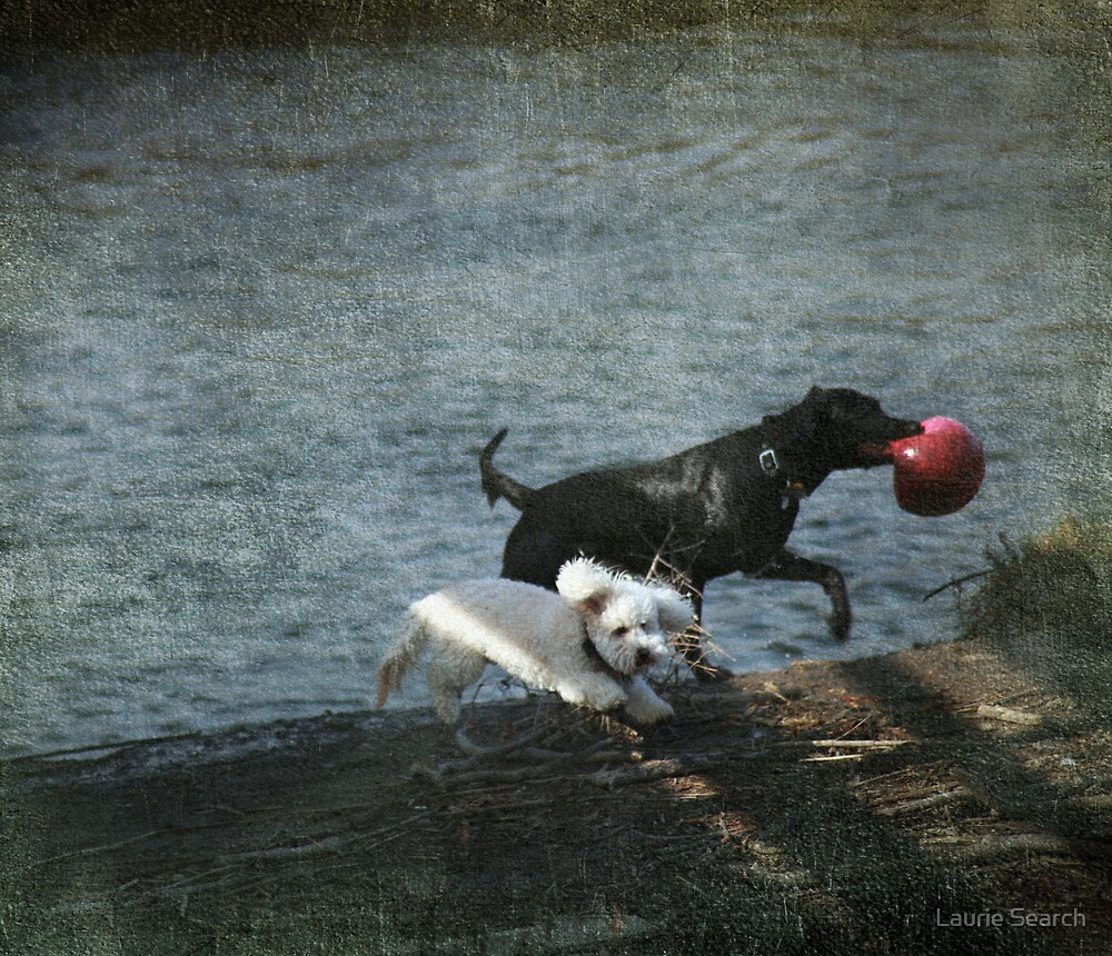 Play Date by Laurie Search