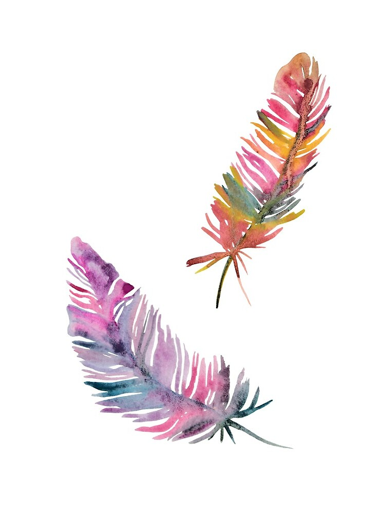 feathers by spoto
