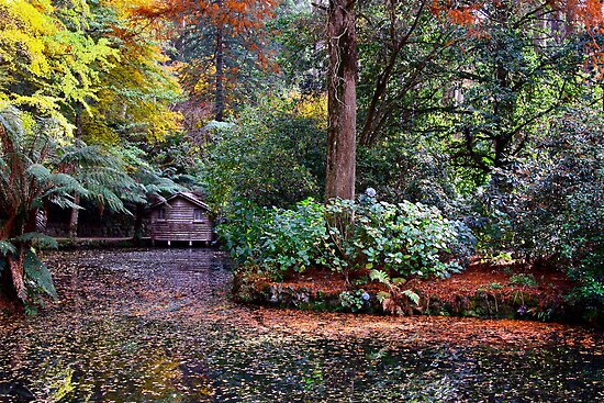 Boat House in Autumn by Ronald Rockman