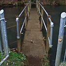 Bridge by Darren Glendinning