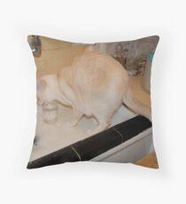 Never Eccentric Oscar Throw Pillow