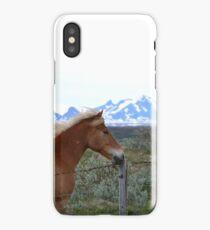 Icelandic Pony iPhone Case/Skin