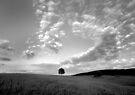Summer Sky by photosbytony