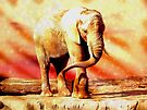 Elephant Dreams by Veronica Schultz