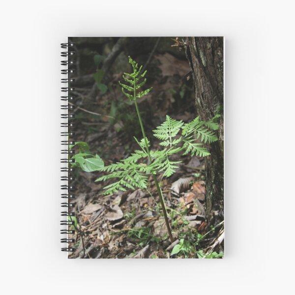 Wild Ozark Rattlesnake Fern Spiral Notebook