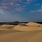 Slightly Lighted Dunes  by Amir Sourial