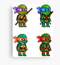Teenage Mutant Ninja Turtles Pixels Canvas Print