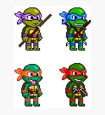 Teenage Mutant Ninja Turtles Pixels Photographic Print