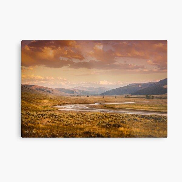 Fall Lamar Valley - Yellowstone National Park Metal Print