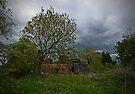 Abandoned by Nigel Bangert