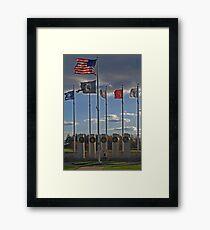 Veterans' Day 2010 Framed Print