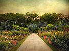 Rose Garden Gazebo by Jessica Jenney