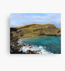Papakōlea Green Sand Beach Canvas Print