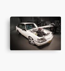 Chris Irvin's Holden VK Commodore Canvas Print