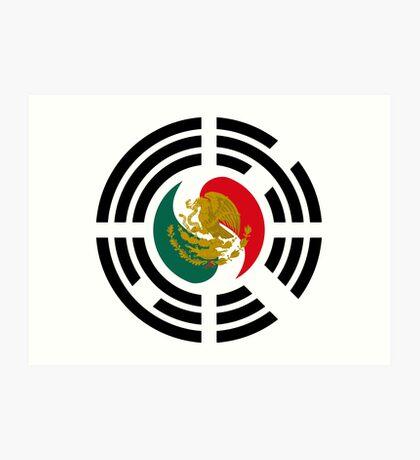 Korean Mexican Multinational Patriot Flag Series Art Print