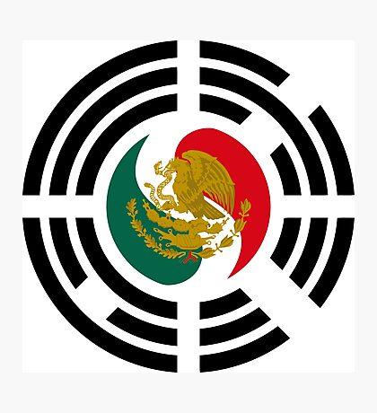 Korean Mexican Multinational Patriot Flag Series Photographic Print