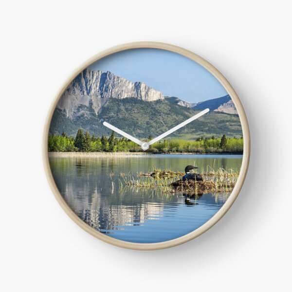 Nest with a View Clock