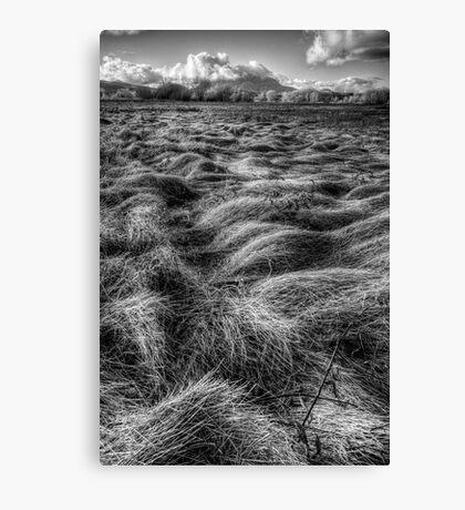 Straw Flow Canvas Print