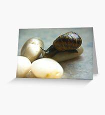 Snail #4 Greeting Card