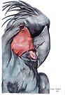 Palm Cockatoo by Meaghan Roberts