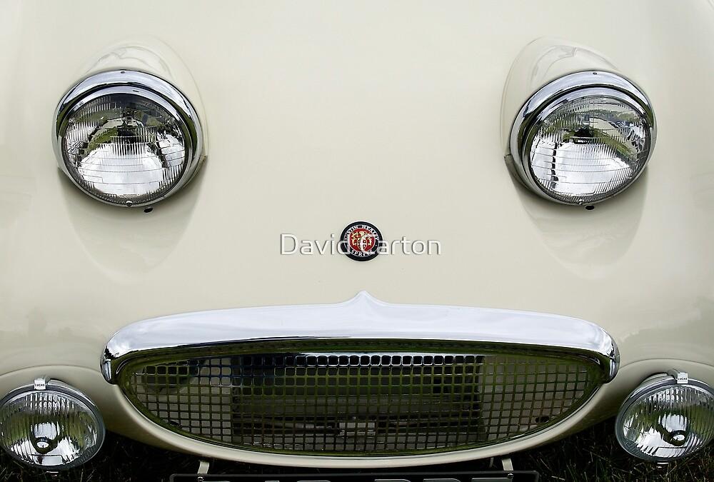 """Frog Eyed"" Austin Sprite by David Carton"