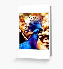 Victoria Crowned Pigeon - Postcard Greeting Card