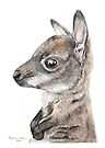 Gorgeous Joey by Meaghan Roberts