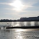 Brighton Pier, Evening by rightonian