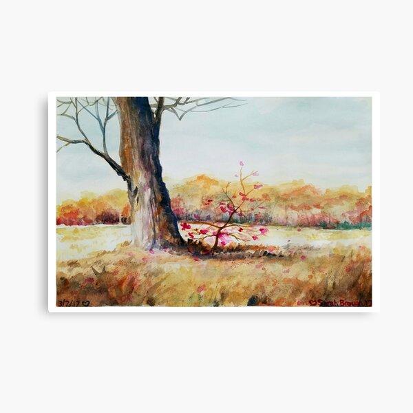 Season's Bloom Canvas Print