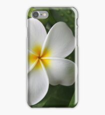 Complacent iPhone Case/Skin