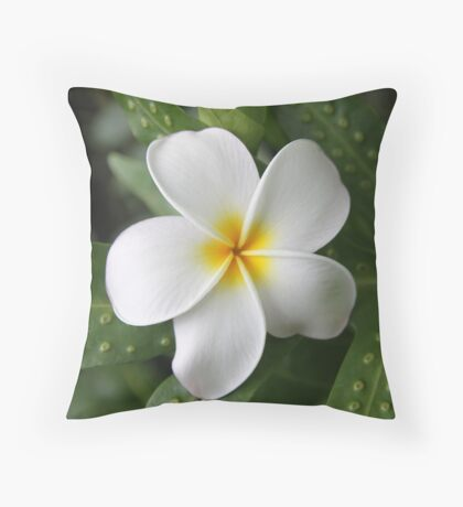 Complacent Throw Pillow
