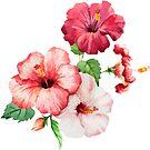 Hübsch in rosa Hibiskus von erinaugusta