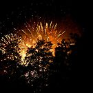 Forest Fireworks I by mojo1160