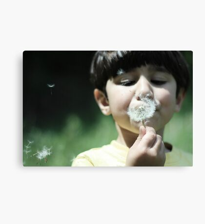 Making Wishes Canvas Print
