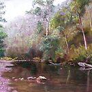 'Jamieson River' by Lynda Robinson