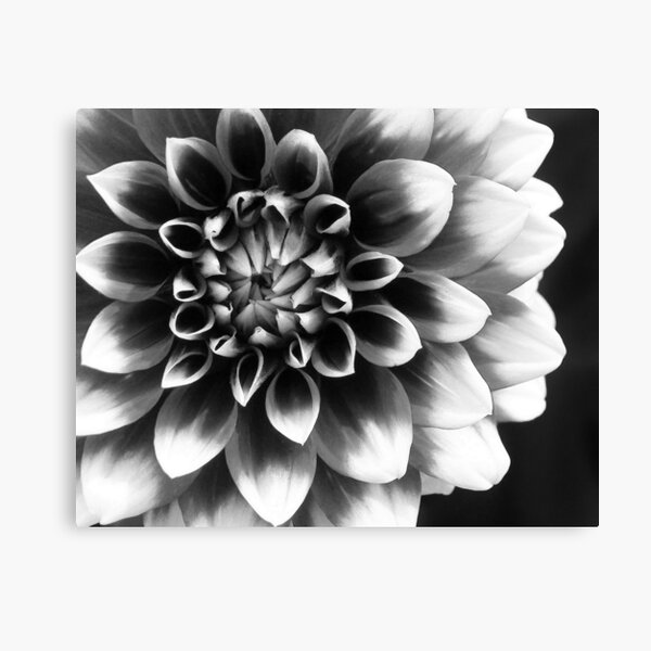 Mad About You Canvas Print