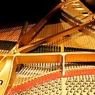 Inside a Steinway Concert Grand  by Heather Friedman