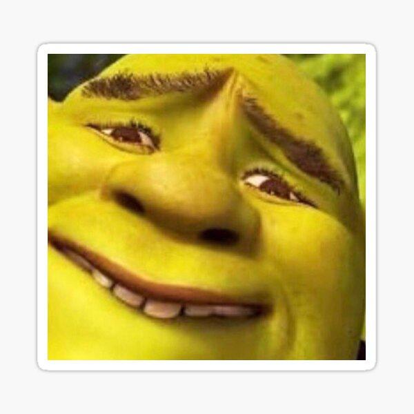 Shrek Meme Face Stickers Redbubble