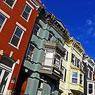 Albany Brownstones by Elizabeth Hoskinson