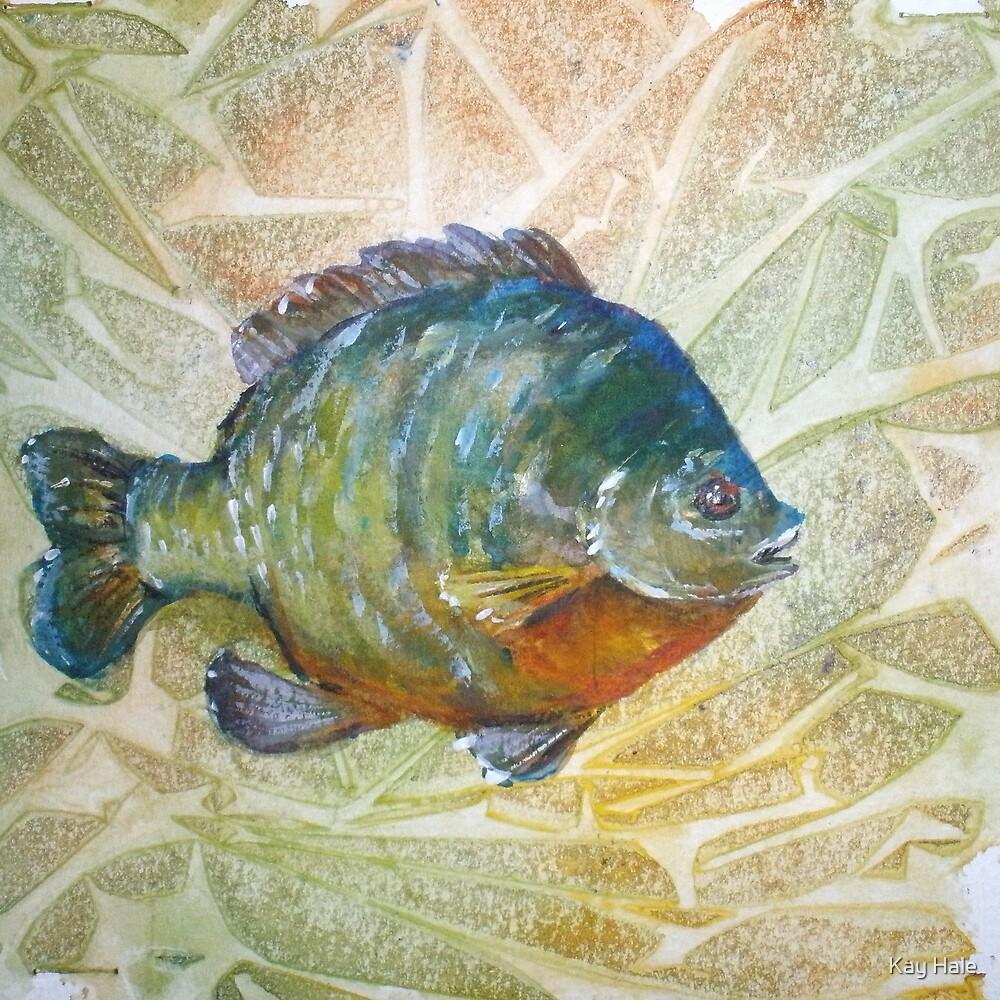 Bluegill by Kay Hale