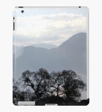 Springs iPad Case/Skin