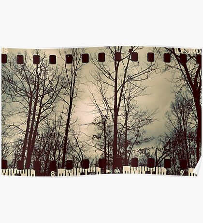 Vintage Trees - Film Overlay Poster